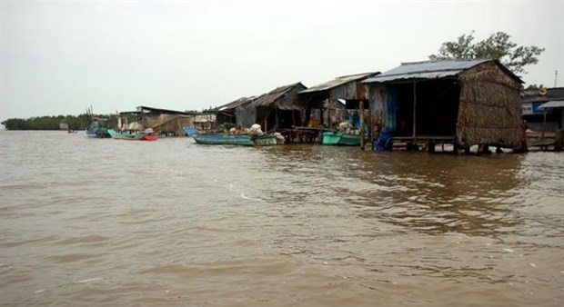 Houses along Vam Xoay estuary in Ca Mau province's Ngoc Hieu district are threatened by erosion (Photo: VNA)